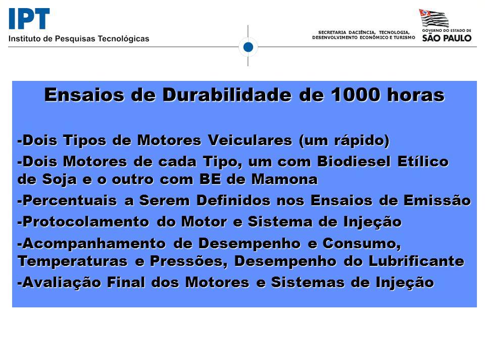 SECRETARIA DACIÊNCIA, TECNOLOGIA, DESENVOLVIMENTO ECONÔMICO E TURISMO Ensaios de Durabilidade de 1000 horas -Dois Tipos de Motores Veiculares (um rápi