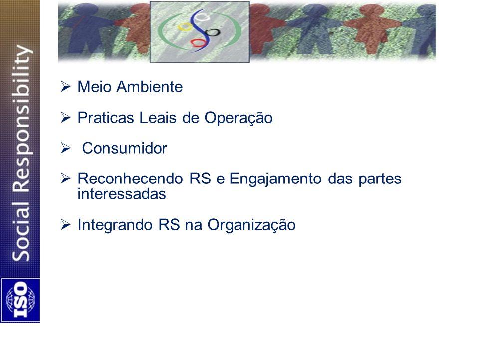 Meio Ambiente Praticas Leais de Operação Consumidor Reconhecendo RS e Engajamento das partes interessadas Integrando RS na Organização
