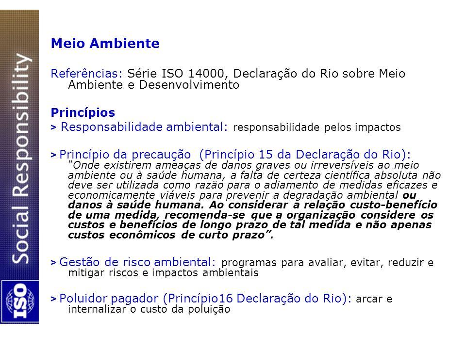 Meio Ambiente Referências: Série ISO 14000, Declaração do Rio sobre Meio Ambiente e Desenvolvimento Princípios > Responsabilidade ambiental: responsab