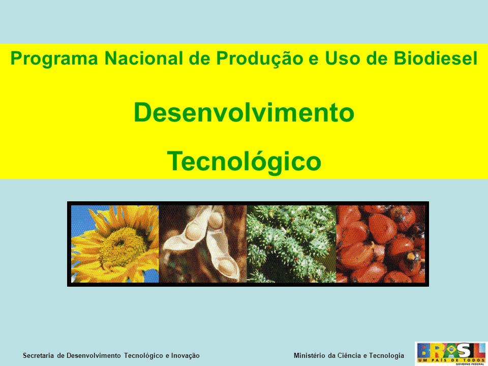 Secretaria de Desenvolvimento Tecnológico e Inovação Ministério da Ciência e Tecnologia Programa Nacional de Produção e Uso de Biodiesel Desenvolvimento Tecnológico