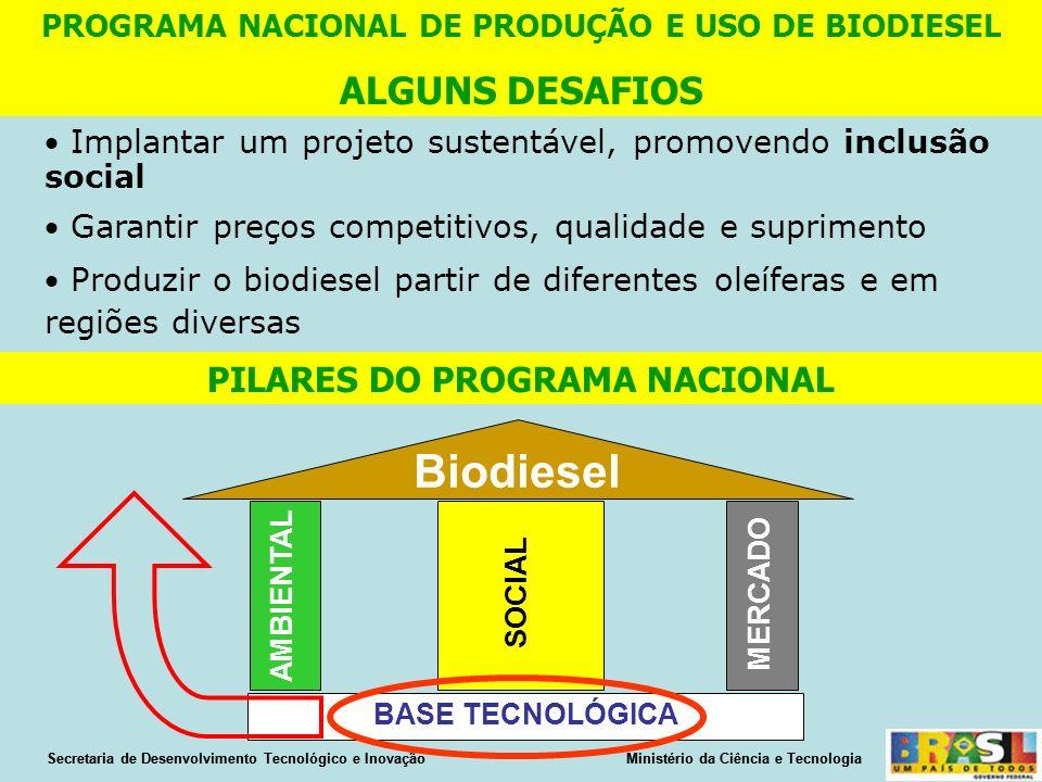 Implantar um projeto sustentável, promovendo inclusão social Garantir preços competitivos, qualidade e suprimento Produzir o biodiesel partir de diferentes oleíferas e em regiões diversas PROGRAMA NACIONAL DE PRODUÇÃO E USO DE BIODIESEL ALGUNS DESAFIOS PILARES DO PROGRAMA NACIONAL Biodiesel AMBIENTAL SOCIAL MERCADO BASE TECNOLÓGICA Secretaria de Desenvolvimento Tecnológico e Inovação Ministério da Ciência e Tecnologia