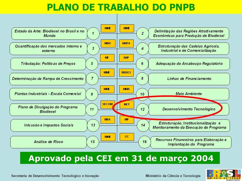 PLANO DE TRABALHO DO PNPB Aprovado pela CEI em 31 de março 2004 Secretaria de Desenvolvimento Tecnológico e Inovação Ministério da Ciência e Tecnologia
