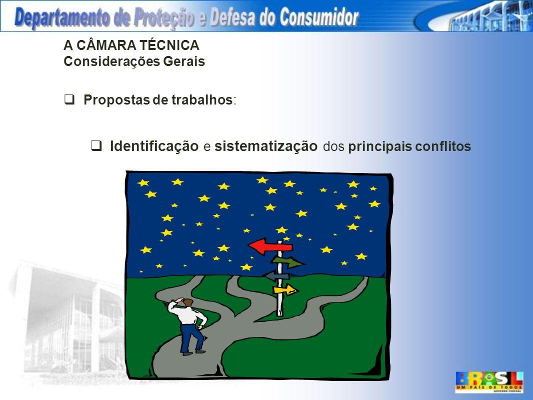 A CÂMARA TÉCNICA Considerações Gerais Propostas de trabalhos: Identificação e sistematização dos principais conflitos