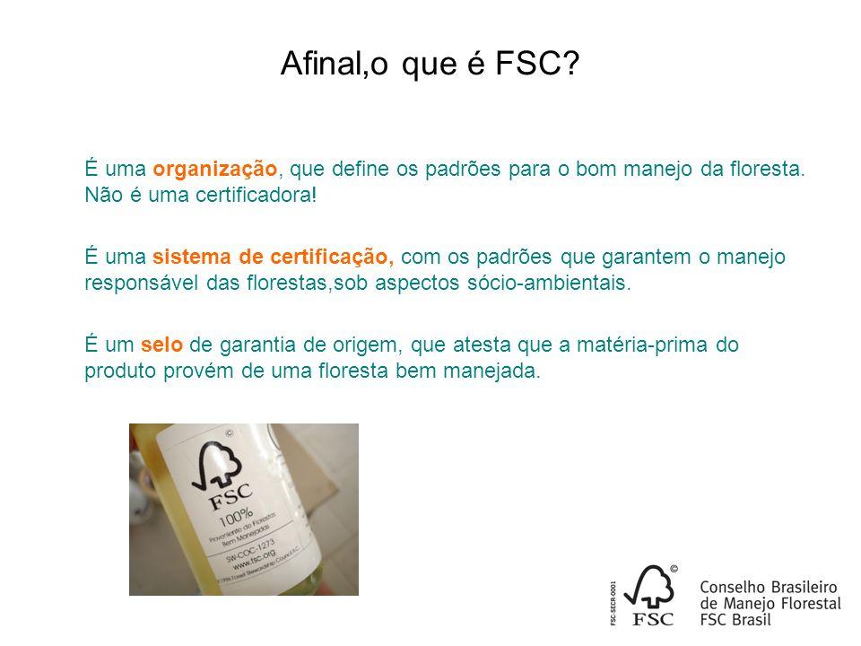 Afinal,o que é FSC.É uma organização, que define os padrões para o bom manejo da floresta.