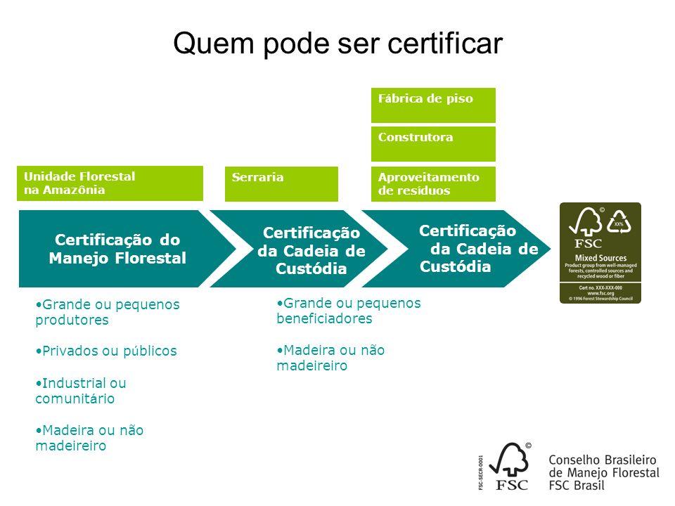 Milhões de hectares acumulado: 5,00 -Maio/07 Fonte: Conselho Brasileiro de Manejo Florestal (FSC Brasil) Área por Tipo de Floresta