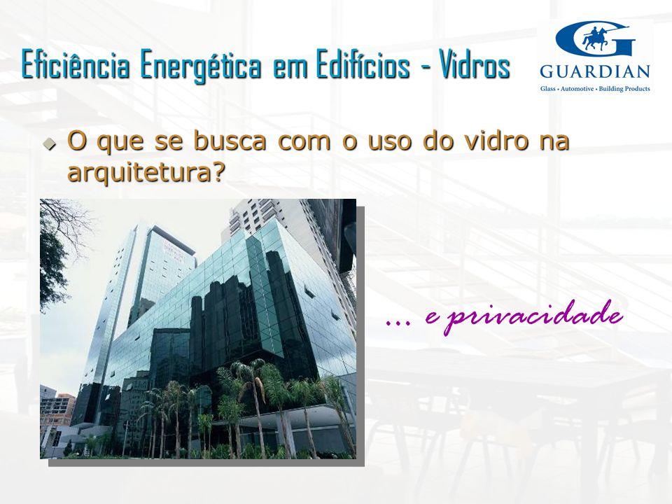 O que se busca com o uso do vidro na arquitetura? O que se busca com o uso do vidro na arquitetura?... e privacidade Eficiência Energética em Edifício