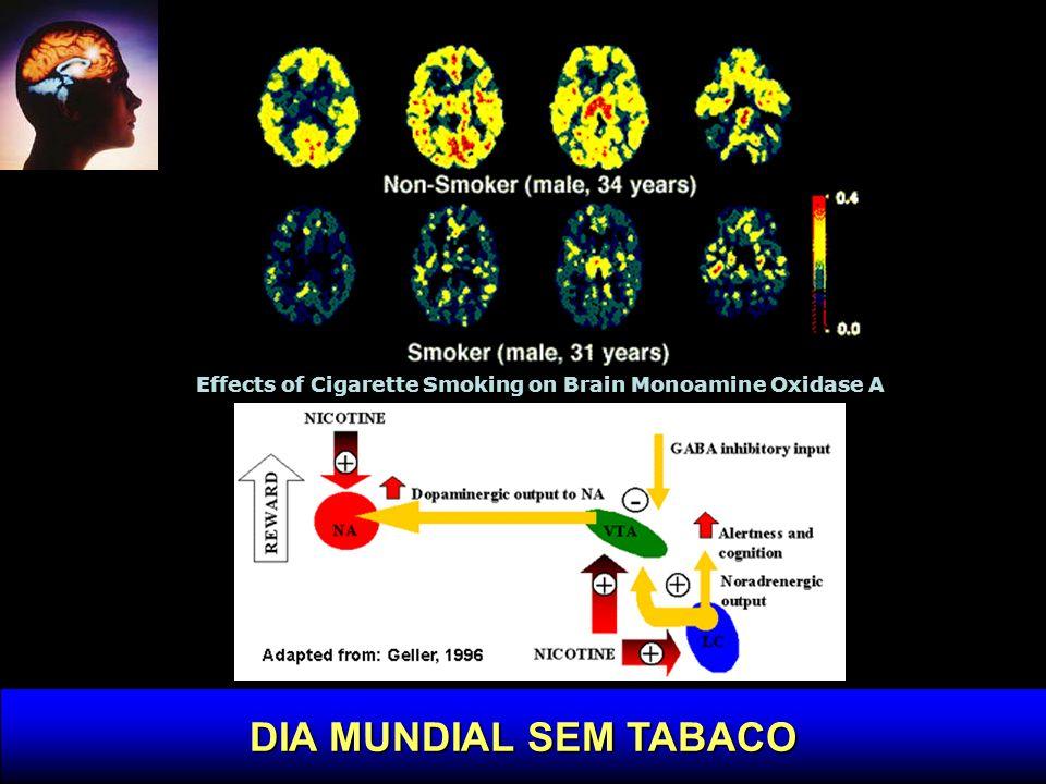 DECLÍNIO COGNITIVO Neurology, Março, 2004 European Community Concerted Action Epidemiology of Dementia (EURODEM) Dinamarca, Holanda, França e Inglaterra 17,610 indivíduos acima dos 65 avaliados para demência.