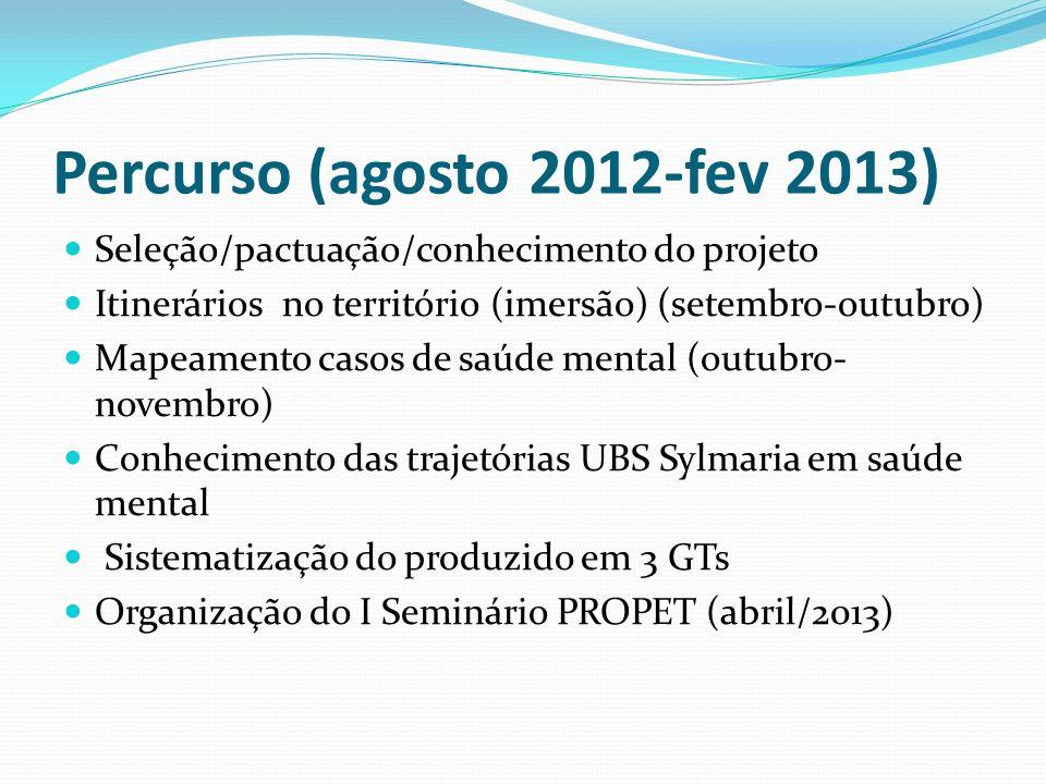 Percurso (agosto 2012-fev 2013) Seleção/pactuação/conhecimento do projeto Itinerários no território (imersão) (setembro-outubro) Mapeamento casos de s