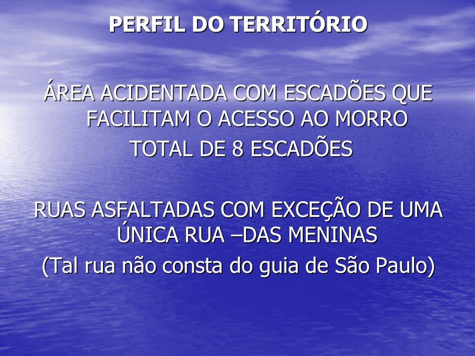 PERFIL DO TERRITÓRIO ÁREA ACIDENTADA COM ESCADÕES QUE FACILITAM O ACESSO AO MORRO TOTAL DE 8 ESCADÕES TOTAL DE 8 ESCADÕES RUAS ASFALTADAS COM EXCEÇÃO DE UMA ÚNICA RUA –DAS MENINAS (Tal rua não consta do guia de São Paulo)