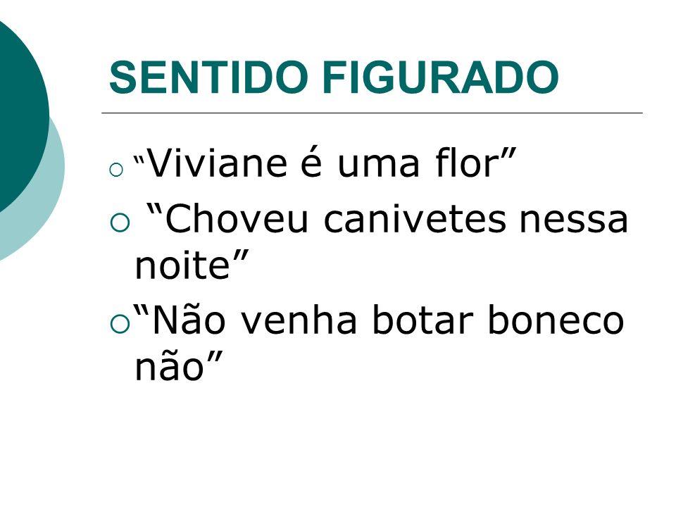SENTIDO FIGURADO Viviane é uma flor Choveu canivetes nessa noite Não venha botar boneco não