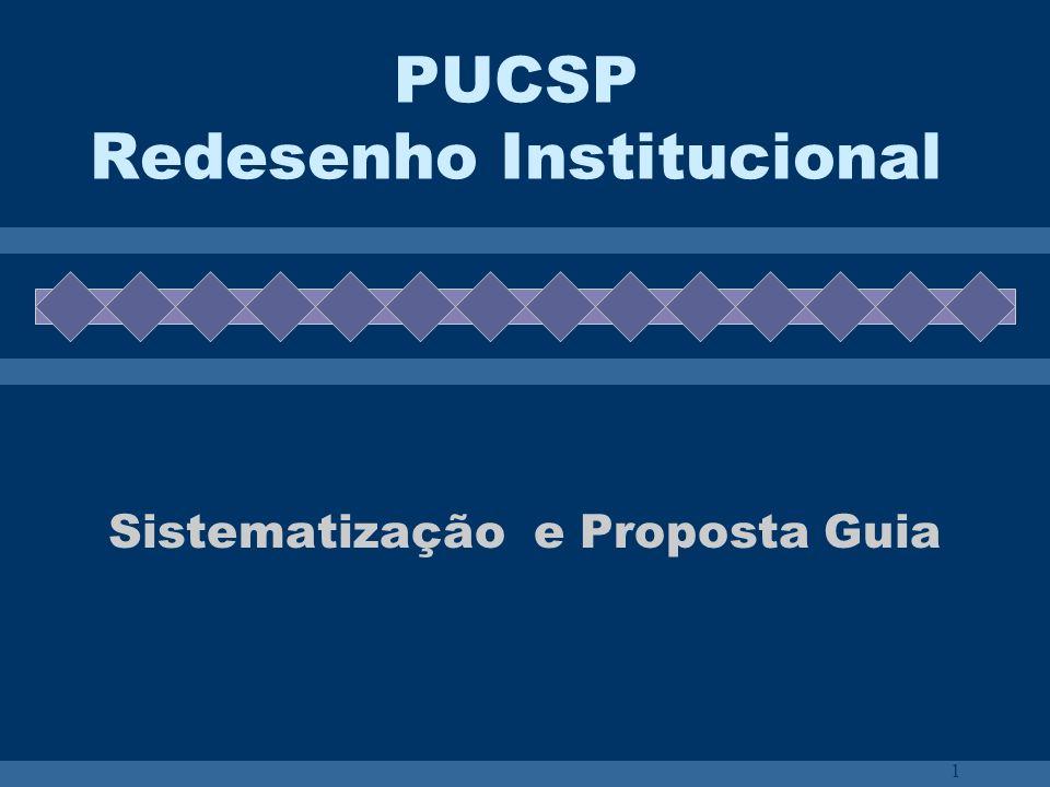 1 PUCSP Redesenho Institucional Sistematização e Proposta Guia