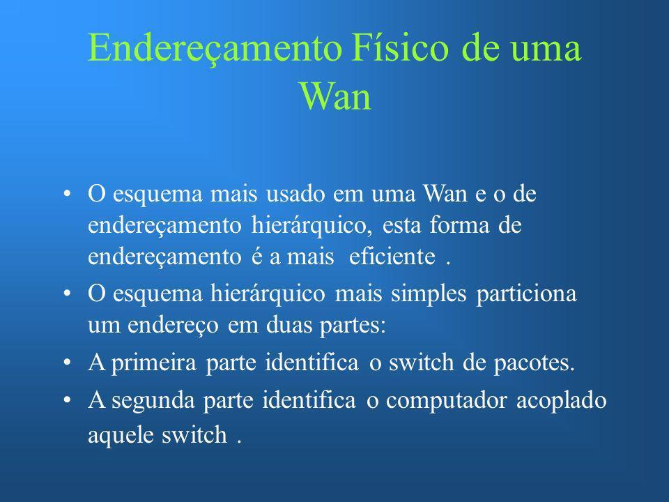 Endereçamento Físico de uma Wan O esquema mais usado em uma Wan e o de endereçamento hierárquico, esta forma de endereçamento é a mais eficiente. O es