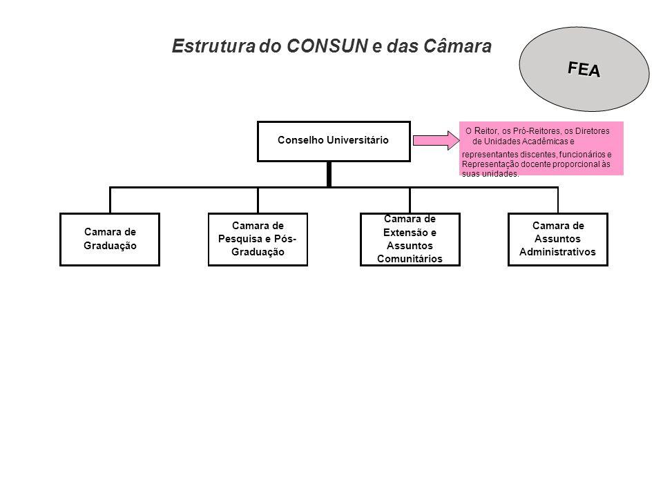 Estrutura do CONSUN e das Câmara Camara de Assuntos Administrativos Conselho Universitário O R eitor, os Pró-Reitores, os Diretores de Unidades Acadêm