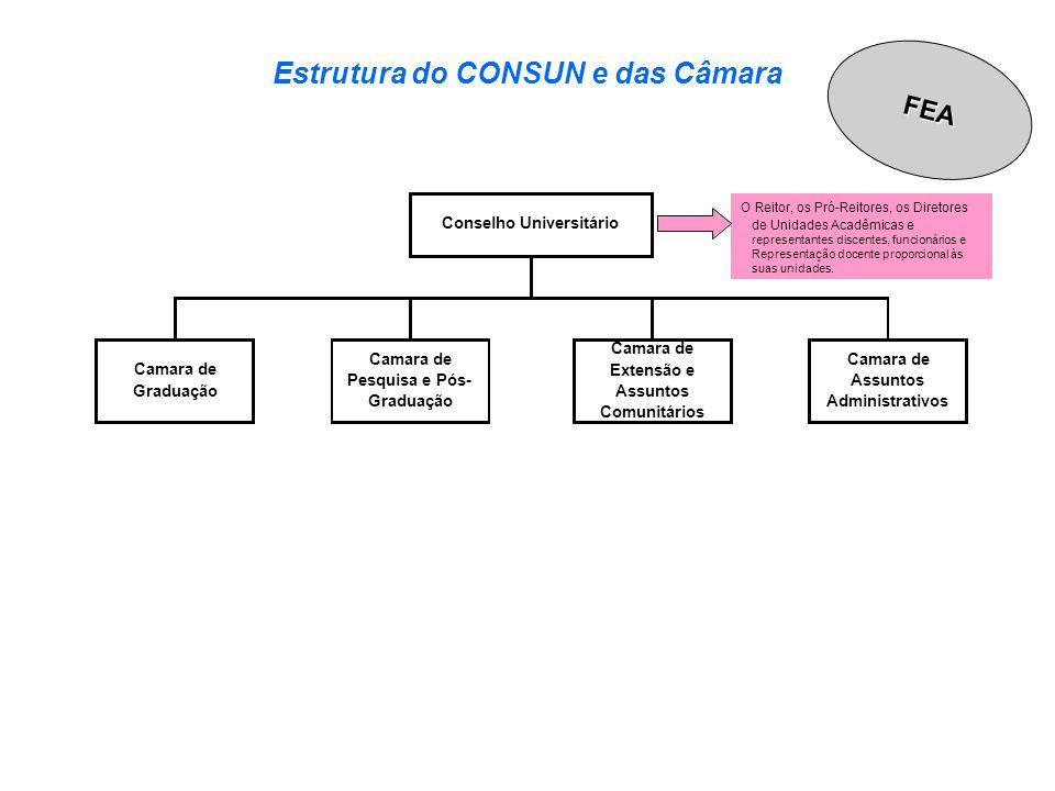 Estrutura do CONSUN e das Câmara Camara de Assuntos Administrativos Conselho Universitário O Reitor, os Pró-Reitores, os Diretores de Unidades Acadêmi