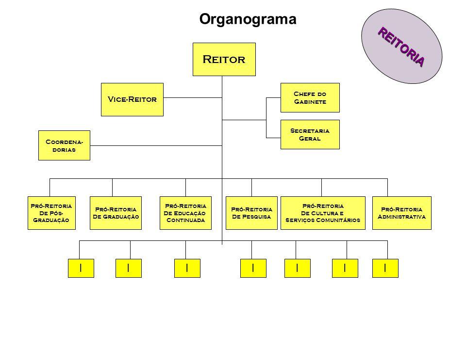 Organograma Reitor Pró-Reitoria De Graduação Pró-Reitoria De Pós- Graduação Pró-Reitoria De Cultura e Serviços Comunitários Pró-Reitoria Administrativ