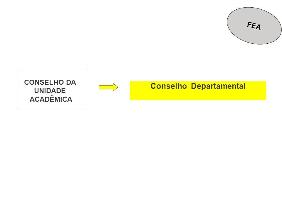 Conselho Departamental CONSELHO DA UNIDADE ACADÊMICA FEA