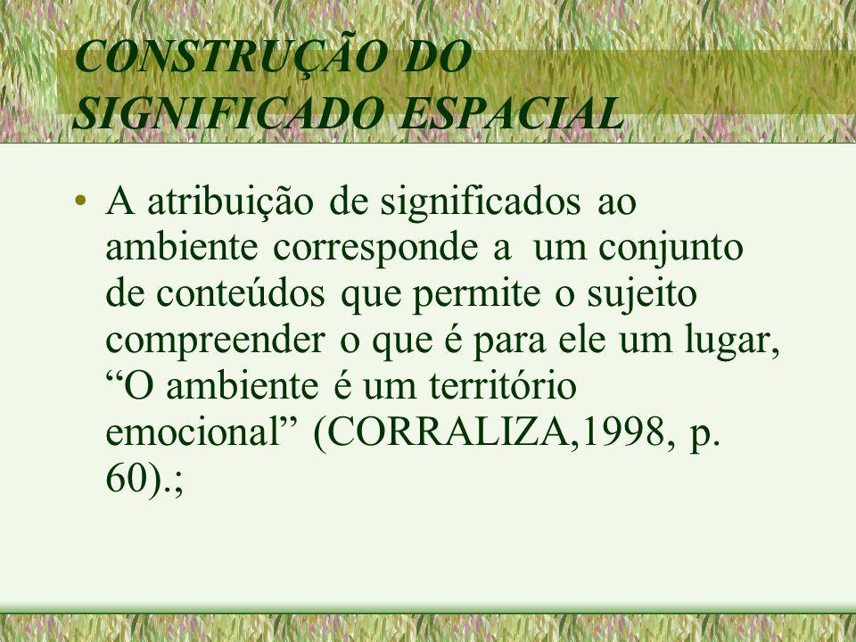 CATEGORIAS ENVOLVIDAS NA CONSTRUÇÃO DO INSTRUMENTO IDENTIDADE DE LUGAR (PROSHANSKY) APROPRIAÇÃO DO ESPAÇO( POL) APEGO AO LUGAR (Giulliani) IDENTIDADE SOCIAL URBANA (VALERA) MEMÓRIA DO LUGAR (JODELET) MAPAS COGNITIVOS (DOWNS Y STEA; KELVIN LINCH )