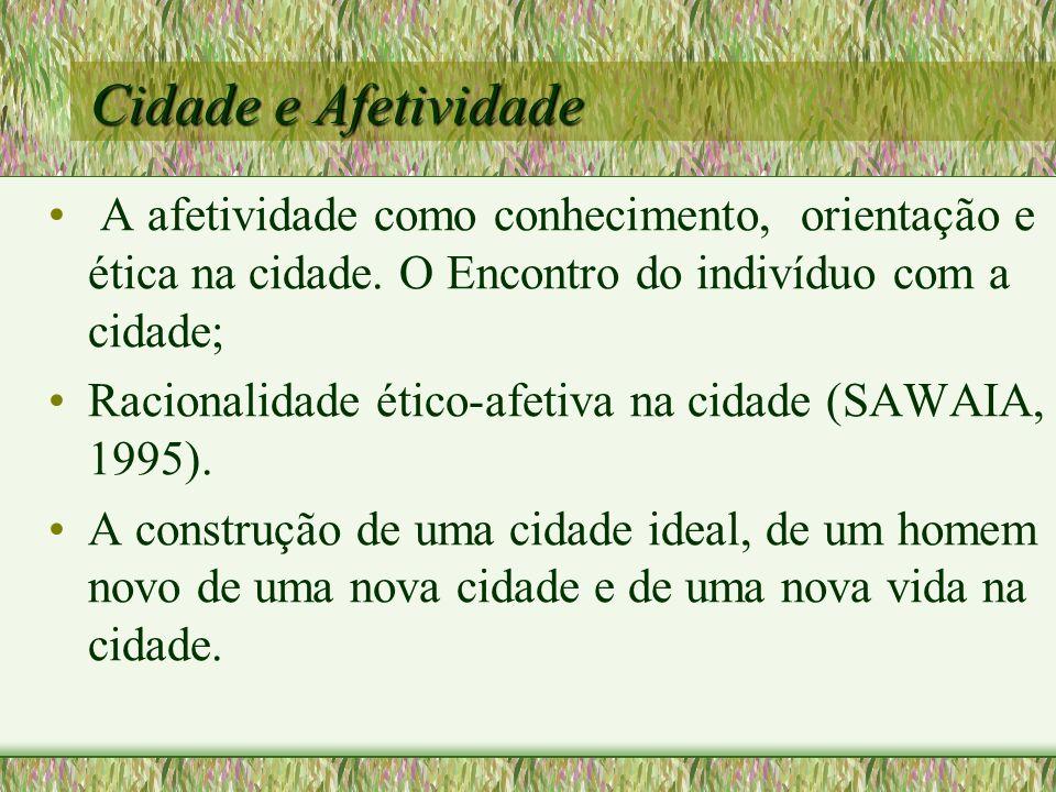 Imagens de contraste e suas metáforas Metáfora 1.Cidade abacaxi (SP) 2.