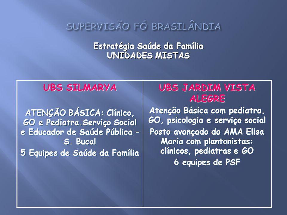 UBS SILMARYA ATENÇÃO BÁSICA: Clínico, GO e Pediatra.Serviço Social e Educador de Saúde Pública – S. Bucal 5 Equipes de Saúde da Família UBS JARDIM VIS