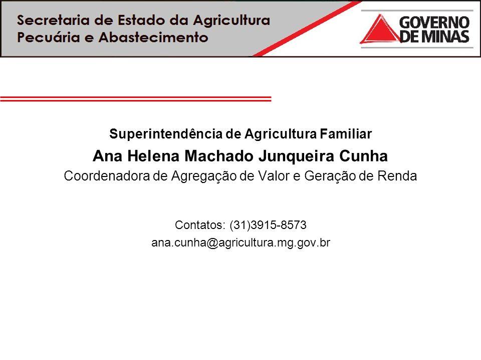 Superintendência de Agricultura Familiar Ana Helena Machado Junqueira Cunha Coordenadora de Agregação de Valor e Geração de Renda Contatos: (31)3915-8