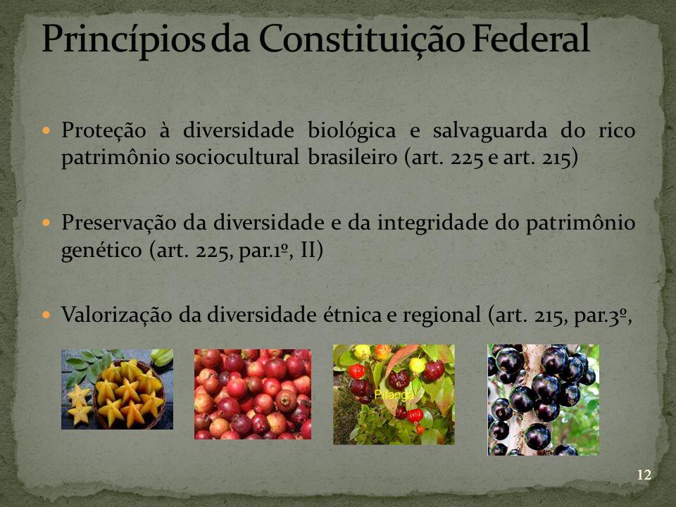 12 Proteção à diversidade biológica e salvaguarda do rico patrimônio sociocultural brasileiro (art. 225 e art. 215) Preservação da diversidade e da in