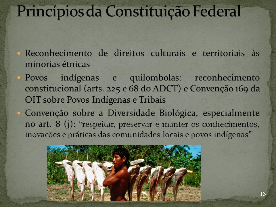 Reconhecimento de direitos culturais e territoriais às minorias étnicas Povos indígenas e quilombolas: reconhecimento constitucional (arts. 225 e 68 d