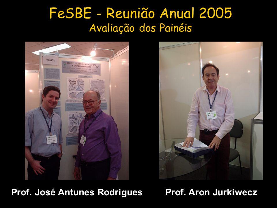 Prof. Aron Jurkiwecz FeSBE - Reunião Anual 2005 Avaliação dos Painéis Prof. José Antunes Rodrigues
