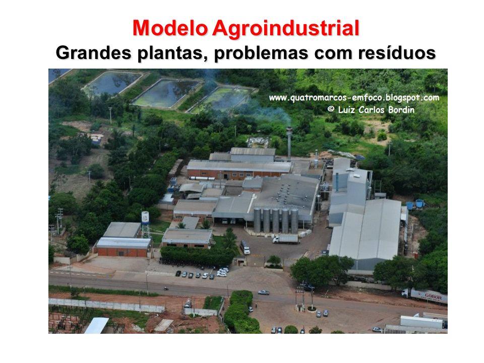 Modelo Agroindustrial Grandes plantas, problemas com resíduos
