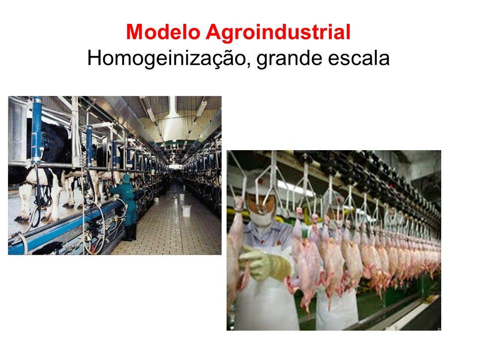 Modelo Agroindustrial Homogeinização, grande escala