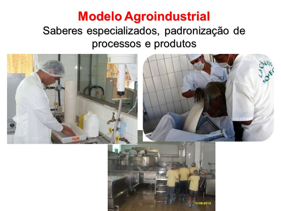 Modelo Agroindustrial Saberes especializados, padronização de processos e produtos