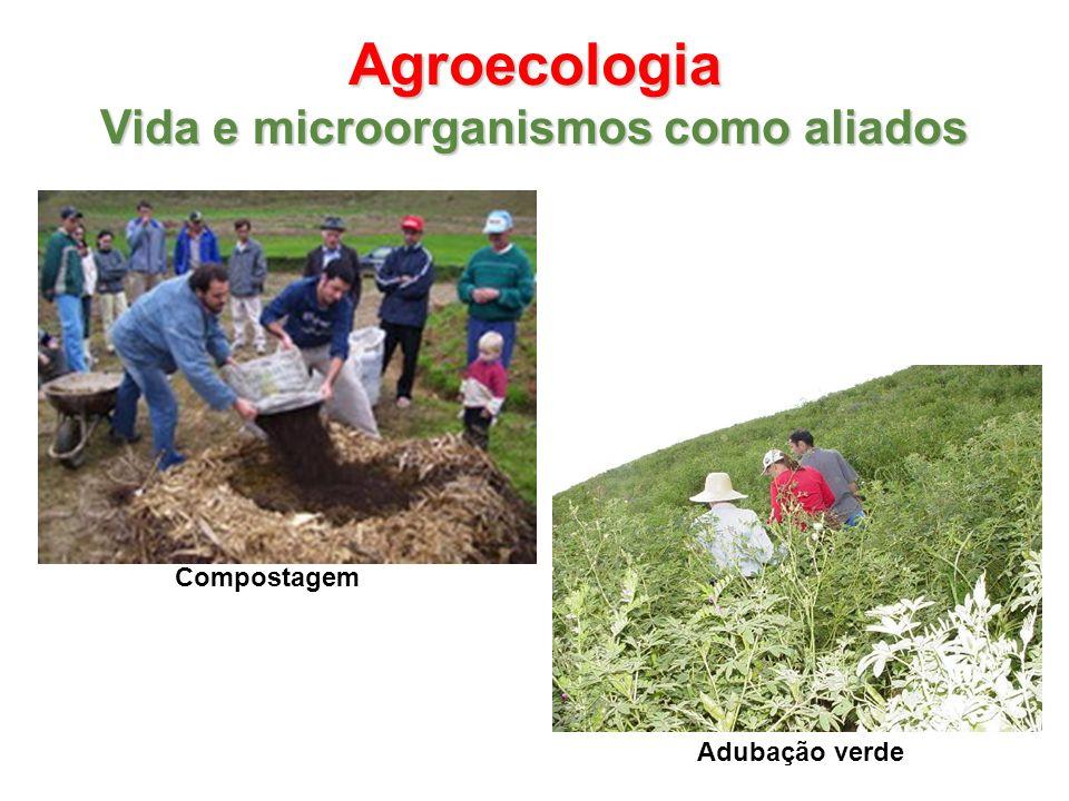 Agroecologia Vida e microorganismos como aliados Adubação verde Compostagem
