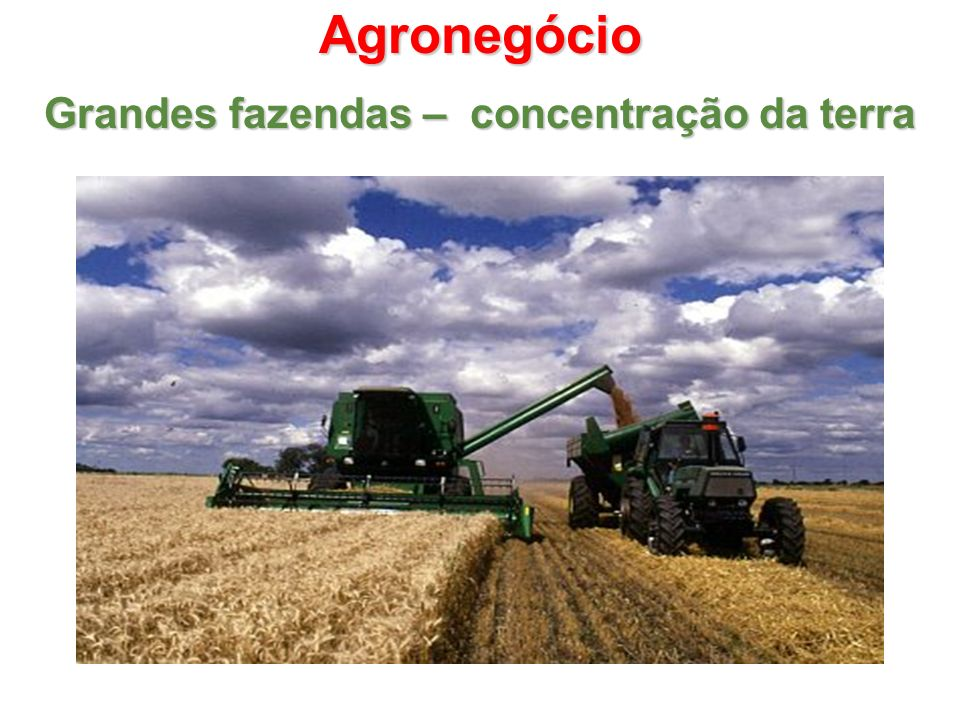 Agronegócio Grandes fazendas – concentração da terra