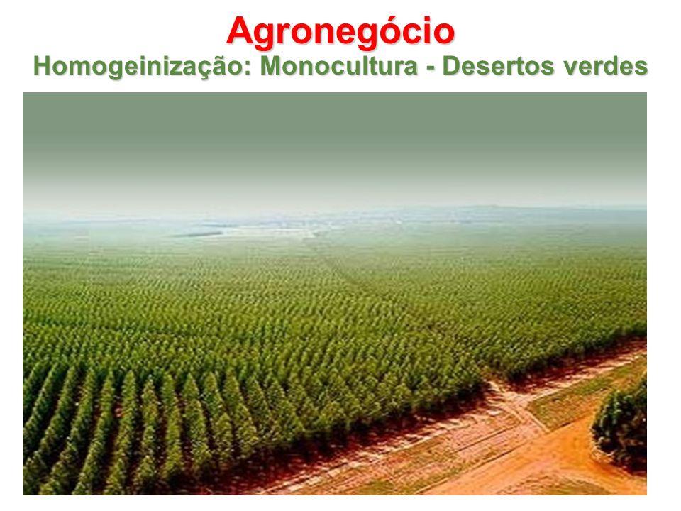 Agronegócio Homogeinização: Monocultura - Desertos verdes