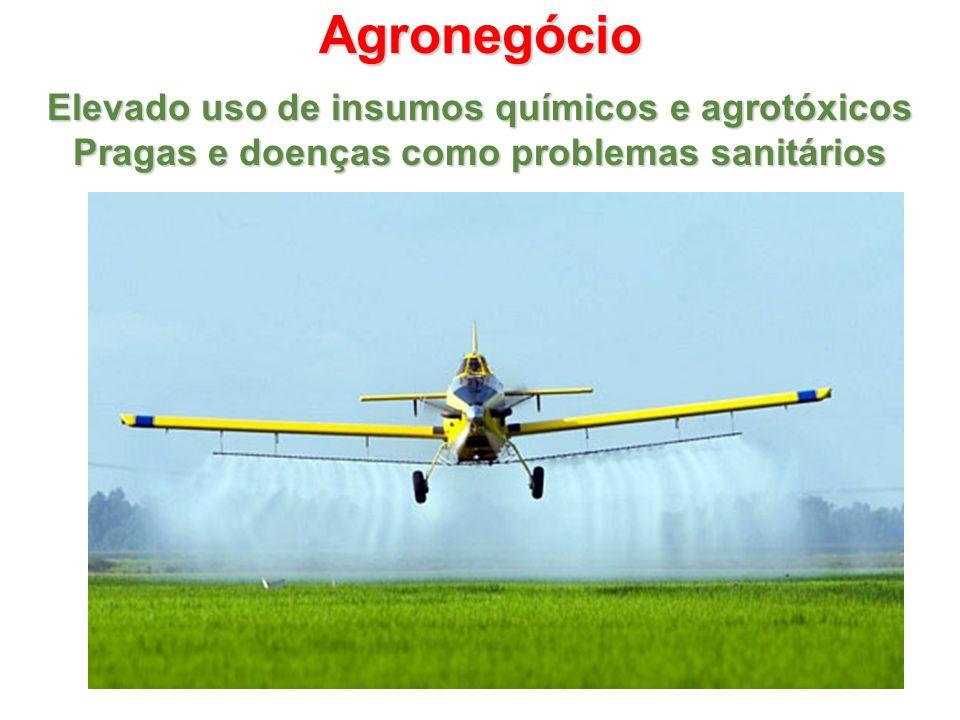 Agronegócio Elevado uso de insumos químicos e agrotóxicos Pragas e doenças como problemas sanitários
