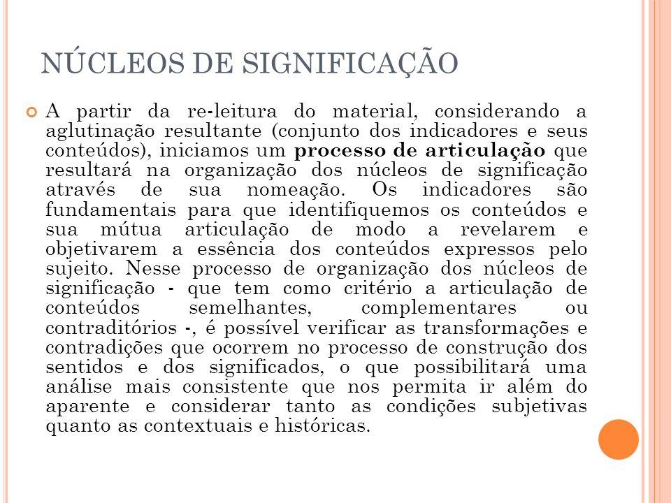 NÚCLEOS DE SIGNIFICAÇÃO A partir da re-leitura do material, considerando a aglutinação resultante (conjunto dos indicadores e seus conteúdos), iniciam