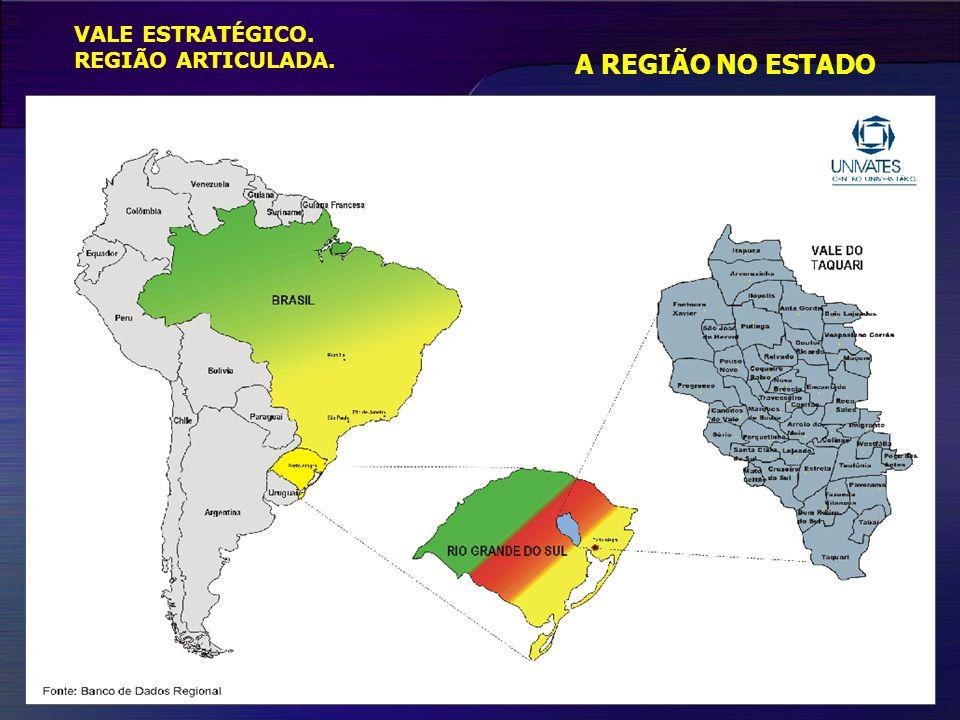 VALE ESTRATÉGICO.INFORMAÇÕES SETORIAIS REGIÃO ARTICULADA.