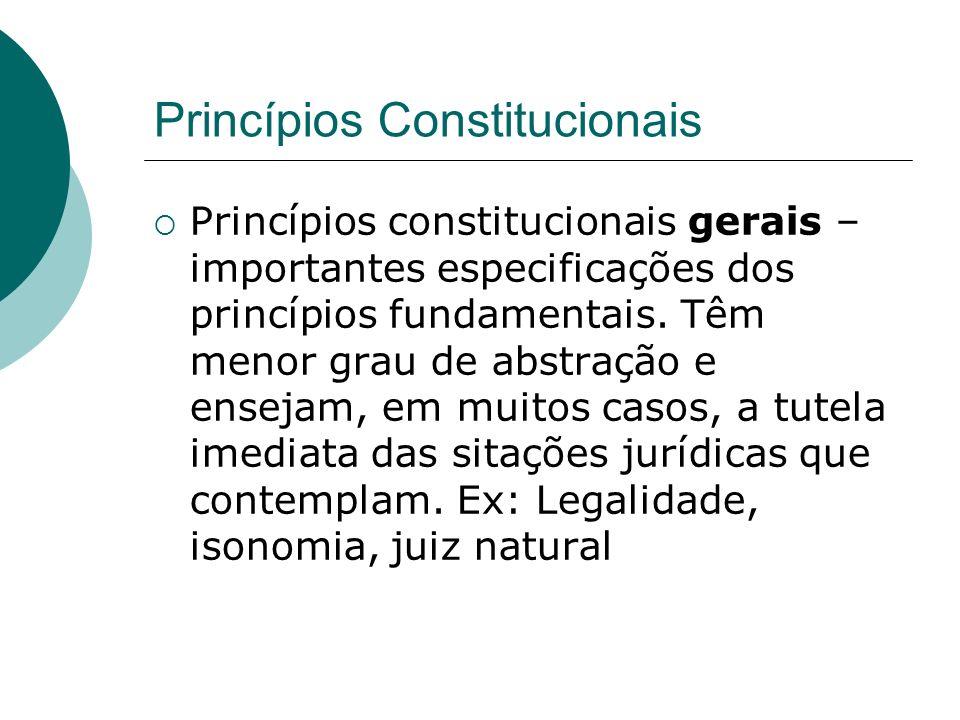 Princípios Constitucionais Princípios constitucionais gerais – importantes especificações dos princípios fundamentais. Têm menor grau de abstração e e