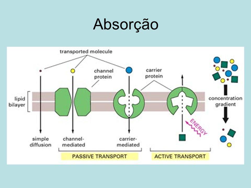 Esquemas lipossomais principais Natural: Viral: Retrovirus.
