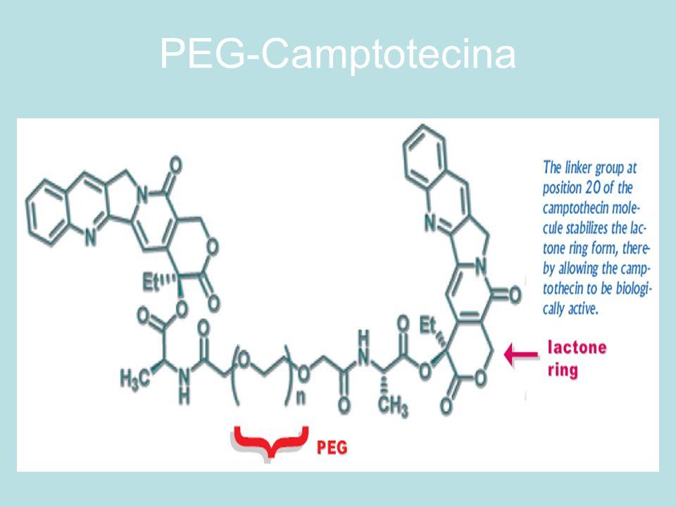 PEG-Camptotecina