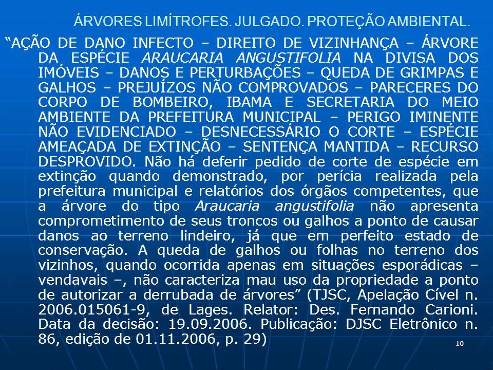 10 ÁRVORES LIMÍTROFES. JULGADO. PROTEÇÃO AMBIENTAL.