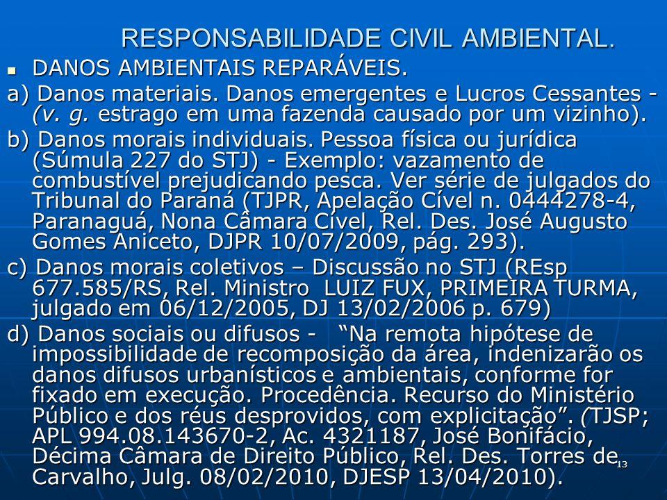 13 RESPONSABILIDADE CIVIL AMBIENTAL. DANOS AMBIENTAIS REPARÁVEIS.