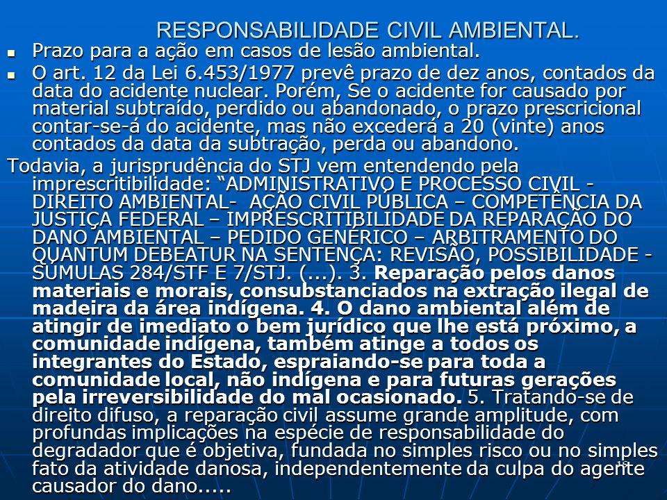 15 RESPONSABILIDADE CIVIL AMBIENTAL. Prazo para a ação em casos de lesão ambiental.