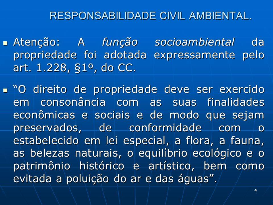 4 RESPONSABILIDADE CIVIL AMBIENTAL.