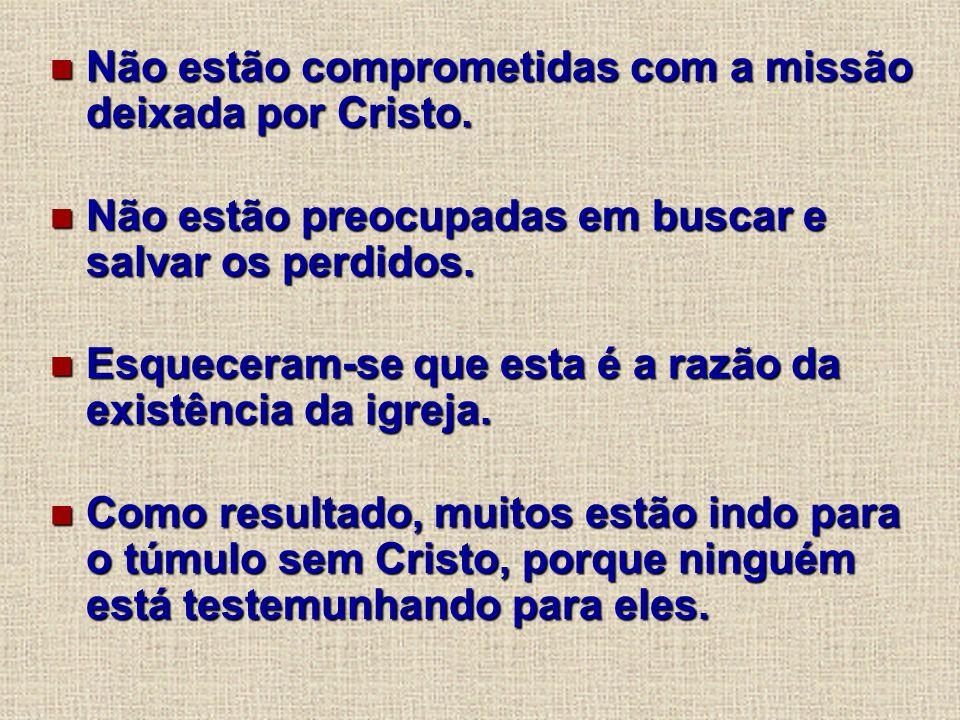 Não estão comprometidas com a missão deixada por Cristo. Não estão comprometidas com a missão deixada por Cristo. Não estão preocupadas em buscar e sa