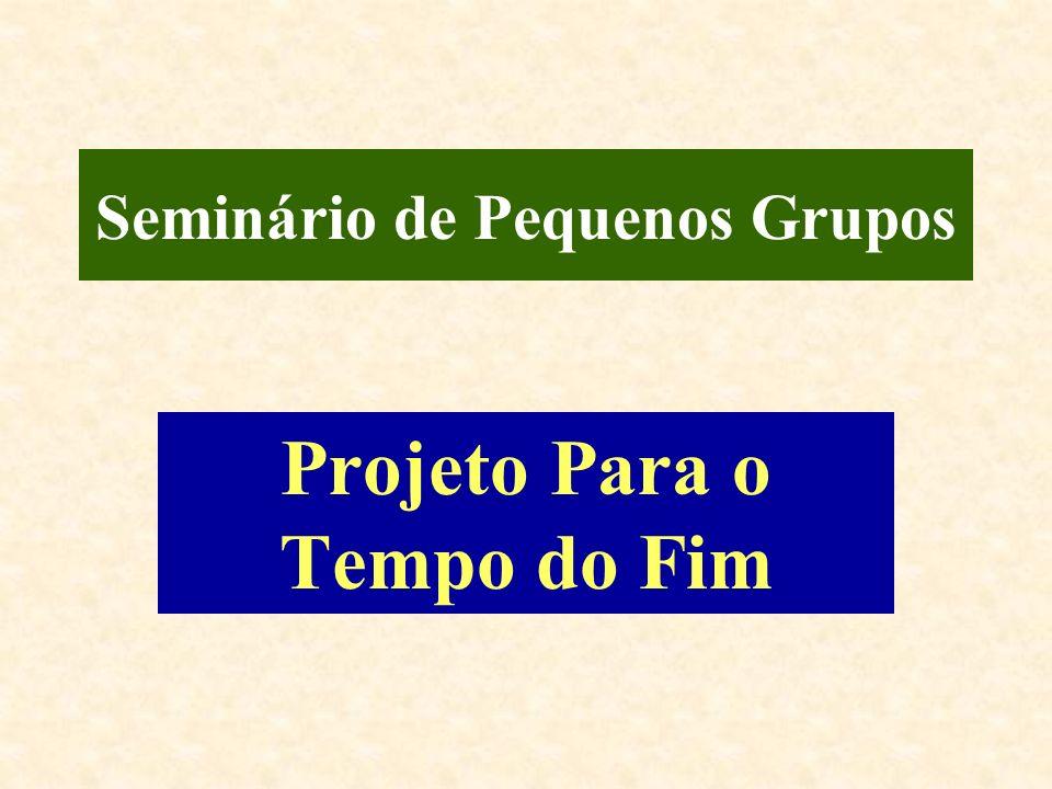 Seminário de Pequenos Grupos Projeto Para o Tempo do Fim