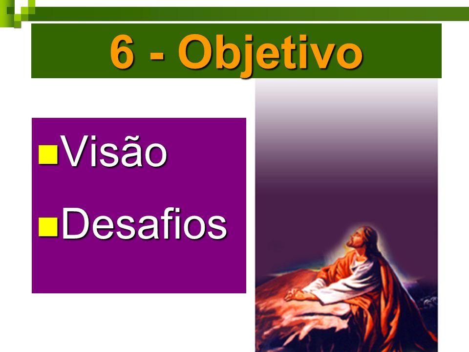 6 - Objetivo Visão Visão Desafios Desafios Visão Visão Desafios Desafios