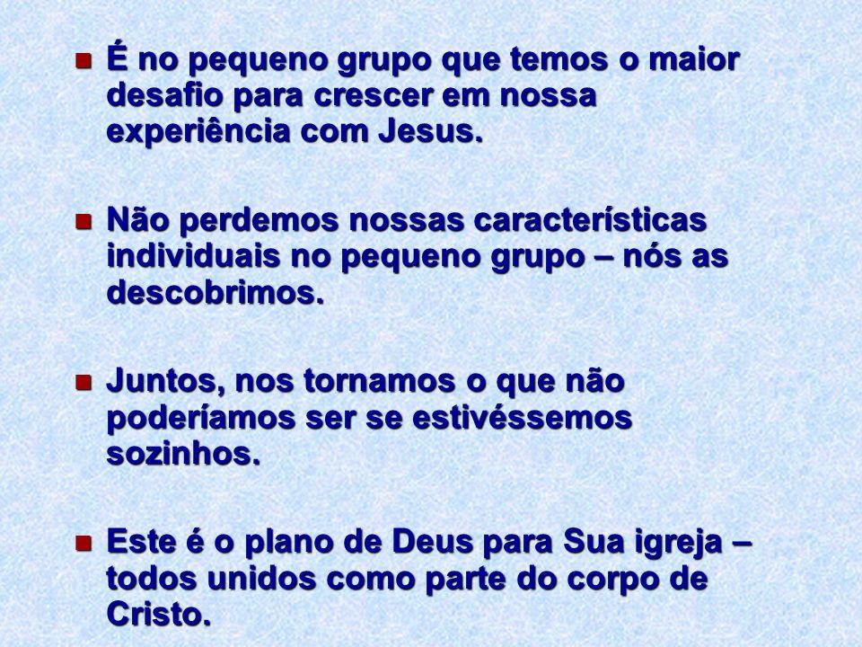 É no pequeno grupo que temos o maior desafio para crescer em nossa experiência com Jesus. É no pequeno grupo que temos o maior desafio para crescer em