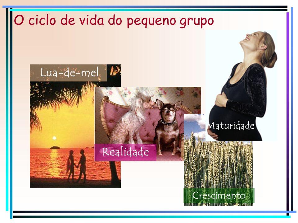 O ciclo de vida do pequeno grupo Lua-de-mel Realidade Crescimento Maturidade