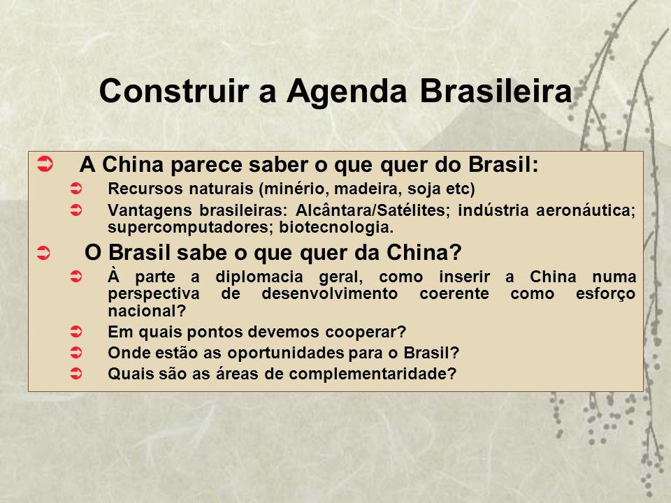 Construir a Agenda Brasileira A China parece saber o que quer do Brasil: Recursos naturais (minério, madeira, soja etc) Vantagens brasileiras: Alcânta