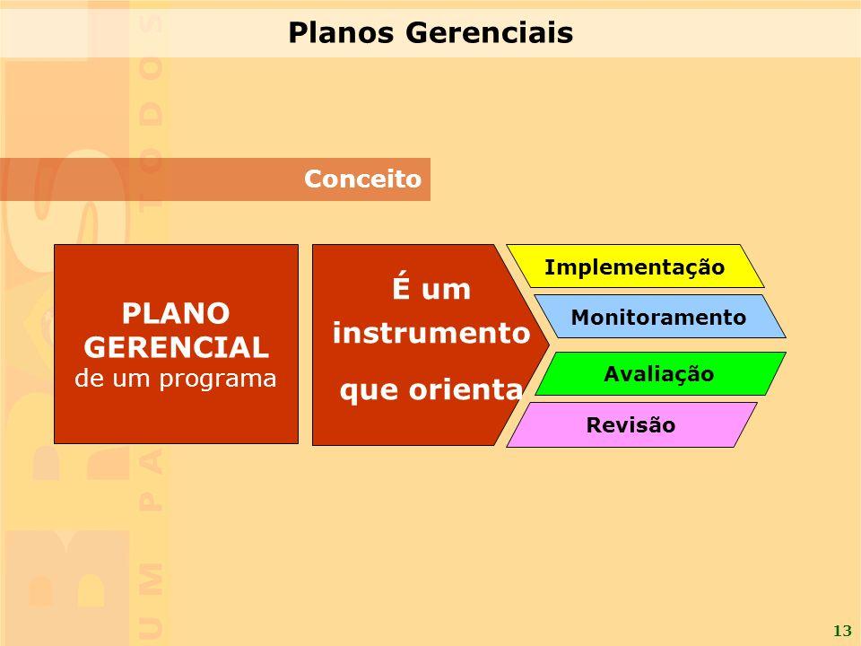 13 É um instrumento que orienta PLANO GERENCIAL de um programa ImplementaçãoMonitoramento Avaliação Revisão Planos Gerenciais Conceito